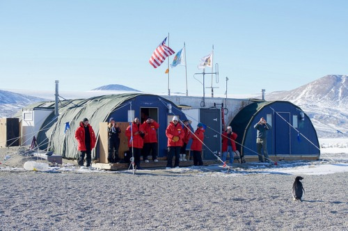 U.S. Secretary of State John Kerry and his traveling party look at an Adélie penguin after it approached them in Antarctica on November 11, 2016, as the Secretary conducted a helicopter tour of U.S. research facilities around Ross Island and the Ross Sea, and visited the McMurdo Station in an effort to learn about the effects of climate change on the Continent. [State Department Photo/ Public Domain]
